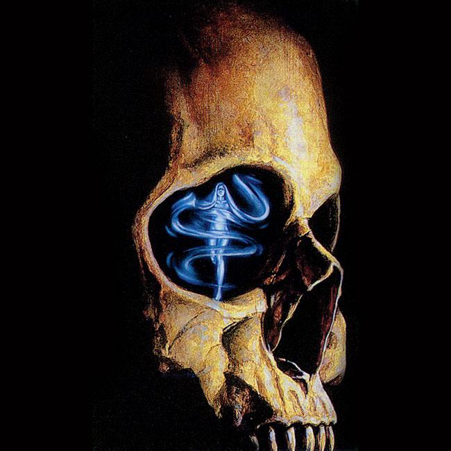 Фото картинки черепа